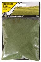 FS614 Woodland Scenics 2mm Static Grass Medium Green